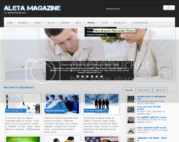 Aleta Magazine Free Wordpress Theme