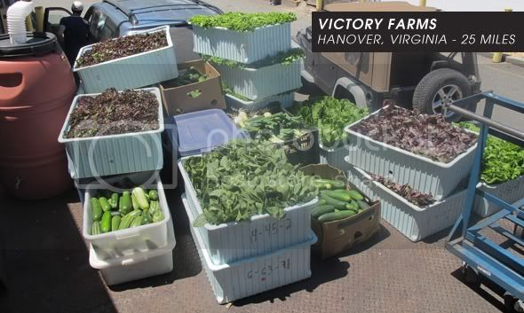 Buckets of Veggies from Victory Farms